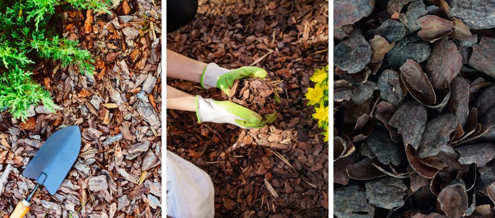 Tuincentrum Schalk | Potgrond, bodemverbeteraar, bodembedekker
